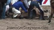 orse_Killed_at_2009_Cheyenne_Rodeo__Graphic_