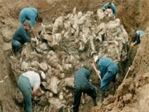 من سريبرينيتشا إلى سورية : مختبر واحد يحدد مصير المفقودين