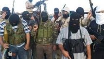 برلين: لم يتم تحقيق النصر الدائم ضد (داعش) حتى الآن