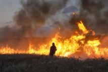 الخارجية السورية : العدوان الاسرائيلي حرب الأصلاء بعد الوكلاء