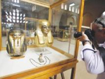 وزير الآثار المصري: العثور على 300 ألف قطة محنطة بالمنيا