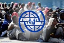 سالفيني: 2137 عودة طوعية لمهاجرين منذ بدء العام الجاري