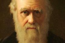"""تشارلز داروين و""""اللغز الفظيع"""" الذي قضّ مضجعه حتى مماته"""