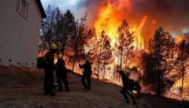 حريق غابات جزيرة جران كاناريا الإسبانية يلتهم أكثر من 1500 هكتار