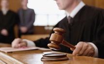 هولندا...محاكمة أب متهم باحتجاز أبنائه بمزرعة 9 أعوام