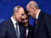 بوتين وأردوغان يشددان على الحاجة لاتخاذ تدابير في إدلب