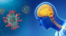فيروس كورونا يصيب الدماغ