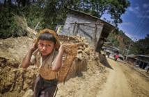 الأعضاء كافة بمنظمة العمل الدولية يصادقون على حظر عبودية الأطفال
