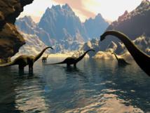علماء يعثرون على عظمة فك لفصيل من الزواحف تاريخها ما قبل زمن الديناصورات