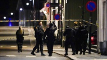 قتل 5 أشخاص بالقوس والسهام في مدينة بالنرويج
