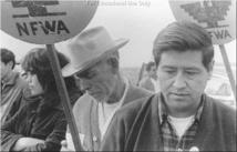 القيادي النقابي سيزار شافيز