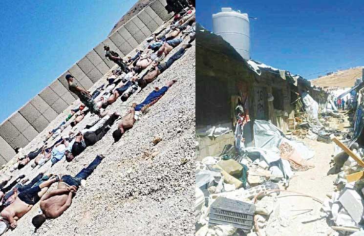شهادة محامي لبناني عما فعله الجيش في مخيمات في عرسال