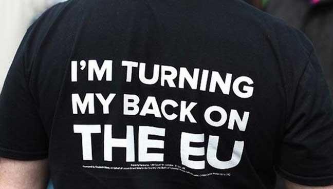 فاراج يدعو لتصويت جديد للخروج من الاتحاد الأوروبي