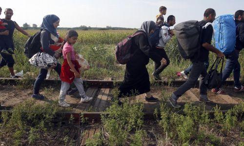 اليونان: مسار جديد للهجرة على ضفاف نهر إيفروس
