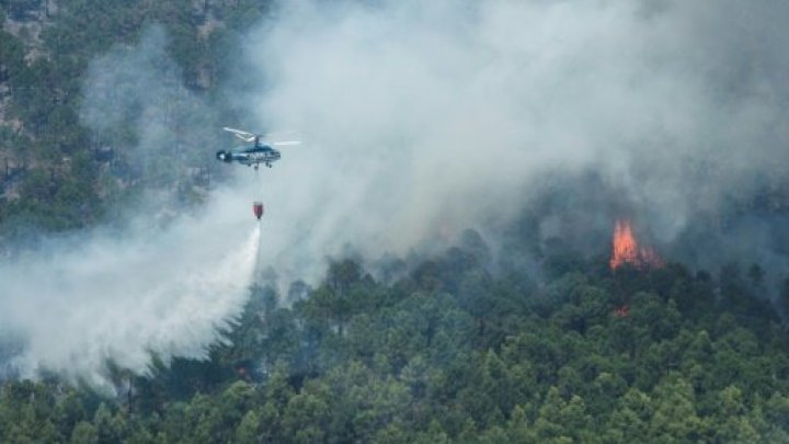 ارتفاع ضحايا حرائق كاليفورنيا إلى 63  وترامب يتفقد المنطقة غدا