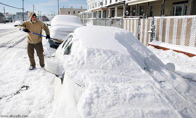 """الفأر""""فيل""""يتكهن بانتهاء الشتاء وحلول الربيع في أمريكا"""