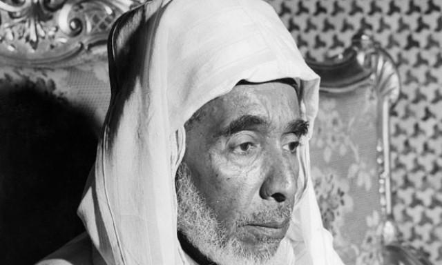 محمد بن عرفة