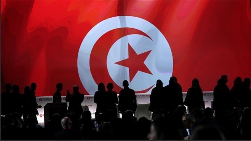 التجربة التونسية ..هدف حملة التشويه الإماراتية