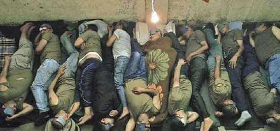 هكذا يتكدس السجناء في زنازين الاسد