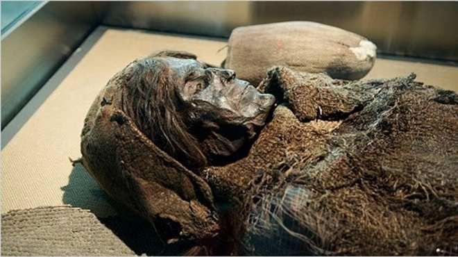 مصر تعلن الكشف عن مومياء من عصر الدولة الوسطى بأسوان