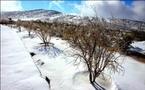 مشهد لم تعرفه المنطقة ,,,الثلج يغطي جبلا اماراتيا