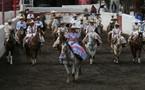 التشارو الكاوبوي المكسيكي يطارد الثيران وهو يستخدم الهاتف المحمول