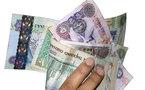 انشاء بنك للتنمية في الامارات براسمال 2,7 مليار دولار