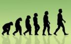 """خطط لإلغاء تدريس نظرية """"التطور"""" لداروين فى المدارس التركية"""