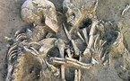 أقدم قصة حب رومانسية.. العثور على رفاة شخصين متعانقين منذ 4500 عام في دبي