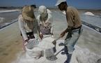 الكنز الابيض ...طقوس استخراج الملح في وزان المغربية
