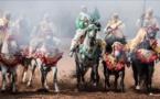 """خيول المغرب تتنافس على جائزة الملك في """"احتفالات النصر"""""""