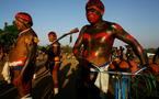 احتدام المعركة بين دعاة الحماية الطبيعية وأنصار التطوير في أقاليم الأمازون