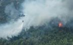 ارتفاع حصيلة ضحايا حرائق شمالي كاليفورنيا إلى 29 قتيلا