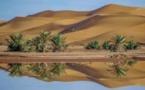 مع احتفالات رأس السنة... جزائريون يكتشفون صحراءهم