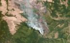 حرائق غابات الأمازون تزداد اشتعالاً ! فما العواقب المستقبليه ؟