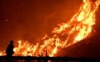 اعلان حالة الطوارئ في أنحاء ولاية كاليفورنيا بسبب حرائق الغابات