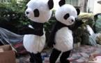 لماذا حظرت براغ أزياء الباندا التنكرية والفقاعات العملاقة؟