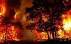 إعلان حالة الطوارئ بولاية أسترالية بسبب خطر حرائق الغابات