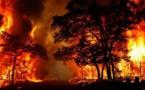 استراليا .. مع الرياح القوية، توقعات بتراجع حدة حرائق الغابات