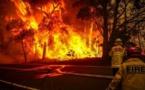 حرائق الغابات في شيلي عام 2017 تسببت في انبعاثات ضاره بالبيئه