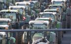 مئات الجرارات تشل مدينة بلنسية الإسبانية مع احتجاج المزارعين