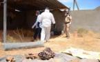 مقابر جماعية بليبيا.. مليشيات حفتر في قفص الاتهام