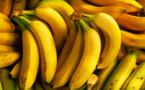 فوائد مذهلة غير متوقعة لقشور الموز والبطاطس
