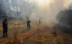 تركياسيطرت على 145 حريقاً من أصل 154 اندلعت بغابات البلاد