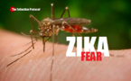 مخاطر زيكا على أولمبياد البرازيل تثير خلافا بين العلماء  والاطباء